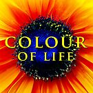 Colour of Life | Damienne Bingham by Didi Bingham