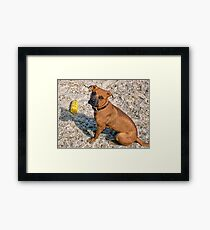 "。◕‿◕。 ☀ ツ ""Yes Thats My Toy, Im Enjoying A Day At The Beach Wanna Play""??。◕‿◕。 ☀ ツ Framed Print"