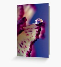 Colour Of Life XXXII [Print & iPad Case] Greeting Card