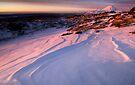 Mt Ngauruhoe still not in Cloud  by Michael Treloar