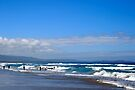 Australia Day, Shoalhaven Heads by Aakheperure