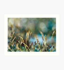 Abstract from Nature Art Print