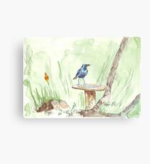 Cape Glossy Starling (Lamprotornis nitens) Canvas Print