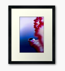 Colour Of Life XXXI Framed Print