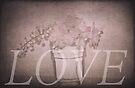 Cherry Love by Denise Abé