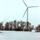 Winter Wind Power by David J. Hudson