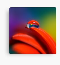Colour Of Life XXI [Print & iPad Case] Canvas Print