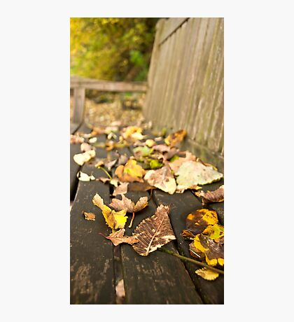 Even Leaves Know When to Rest Photographic Print