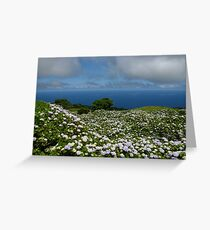Hydrangeas in Horta, Azores Greeting Card
