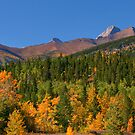 Fall Splendors by Sean Jansen
