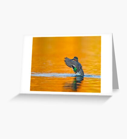 Rising up  Greeting Card