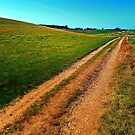 Endless trail near the border by Patrick Jobst