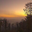 Smoky Mountain Foggy Sunrise by Shane Jones