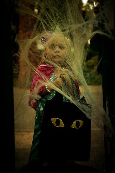 A scared princess by Lynn Starner