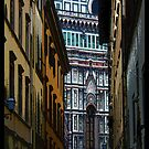 Santa Maria Del Flore Florence, Italy by Ginny Luttrell