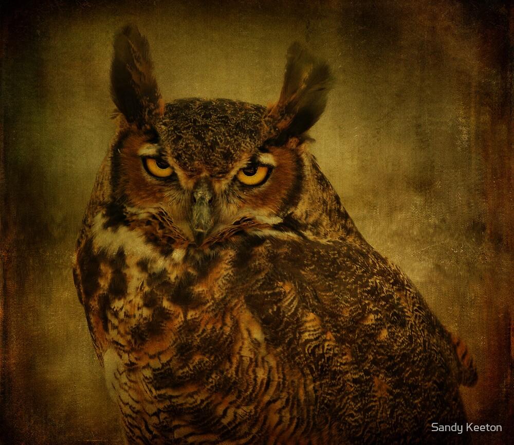 Great Horned Owl by Sandy Keeton