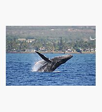 Humpback Breach 1 of 3 Photographic Print