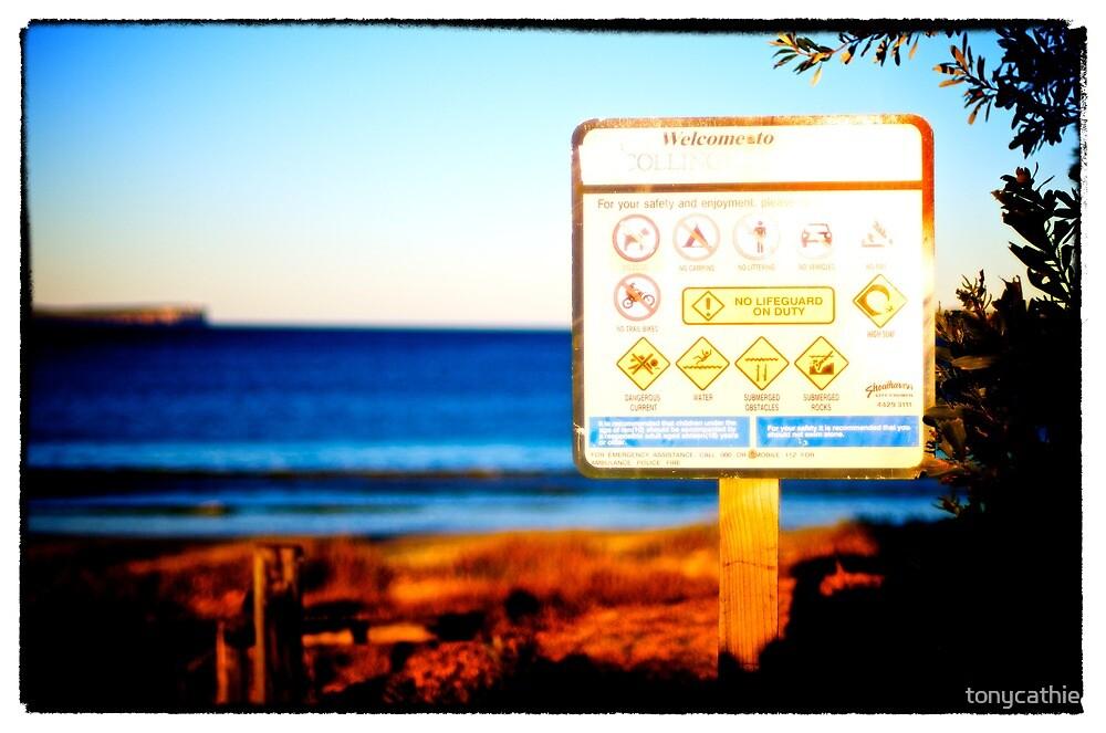 Collingwood Beach 2 by tonycathie