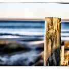 Collingwood Beach 3 by tonycathie