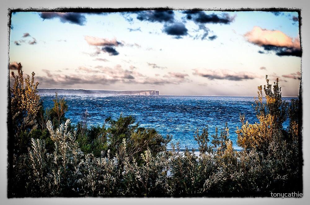 Collingwood Beach 4 by tonycathie