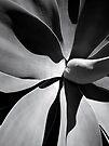Turbine engine by Akrotiri