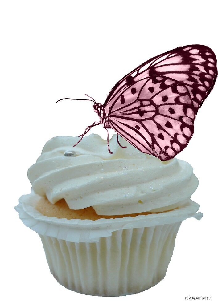 Cupcake and Butterfly by ckeenart