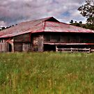 The Old Woolshed by bazcelt