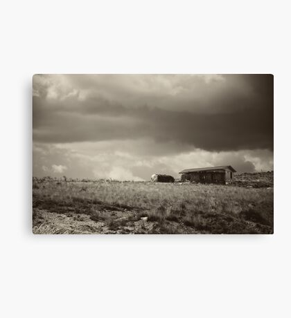 There Will Be Flood - B/W Canvas Print