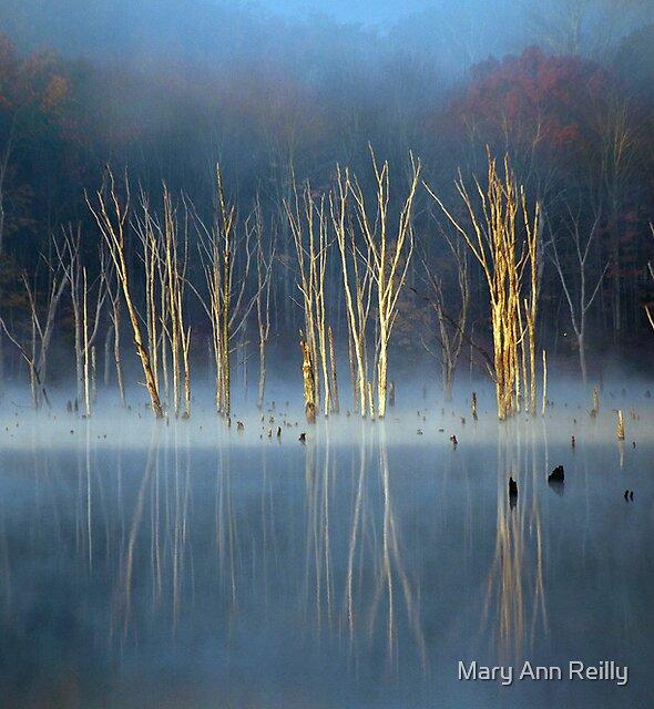 A Certain Grace by Mary Ann Reilly