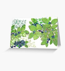 Blueberries from Nova Scotia Greeting Card