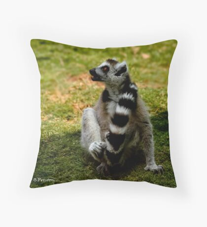 Heads or tails . Throw Pillow