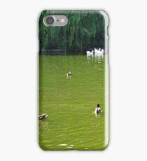 Duck Pond... iPhone Case/Skin