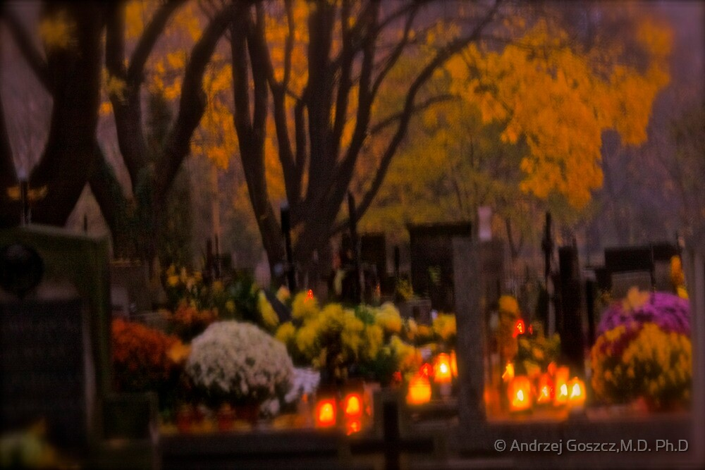 The Rakowicki Cemetery at All Souls' Day . by Brown Sugar . Avant - Garde  Art .  FEATURED ARTISTE . 1 favoritings 156 views . Mercie beaucoupe !Tribute to Alfred Stieglitz . by © Andrzej Goszcz,M.D. Ph.D