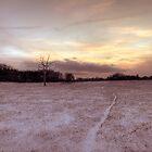 snow way by Jon Downs