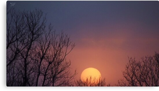 Big Peachy Sunset in Oklahoma by Shelli Fitzpatrick