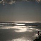 Beachy Head lighthouse by Jon Downs