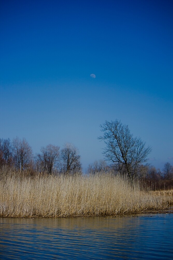 Moon Over Lake in the Daytime by chelseysue