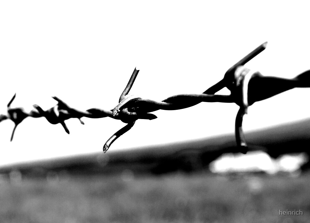 Barbed wire by heinrich