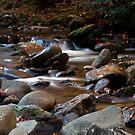 Gentle Cascade by Sam Warner