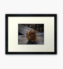 Twilight Rose Framed Print