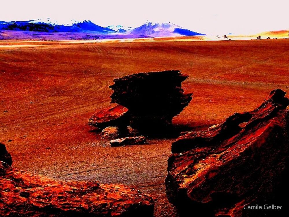 Dark outline of Bird's rock face with Orange background, Siloli desert, Bolivia by Camila Gelber