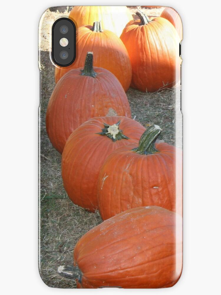 Pumpkin Patch by DebbieCHayes