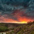 Landscapes 2012  |  Jim Lovell by Jim Lovell