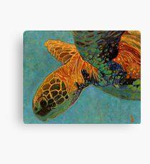 Turtle #1 Canvas Print