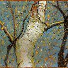 Birch by Richard Bradish Jr
