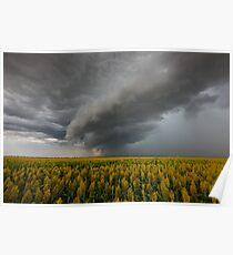 Cornfield Storm Poster