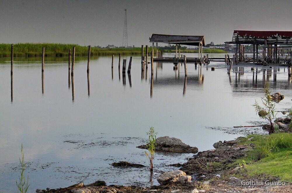 Louisiana Bayou 2 by Dreebs