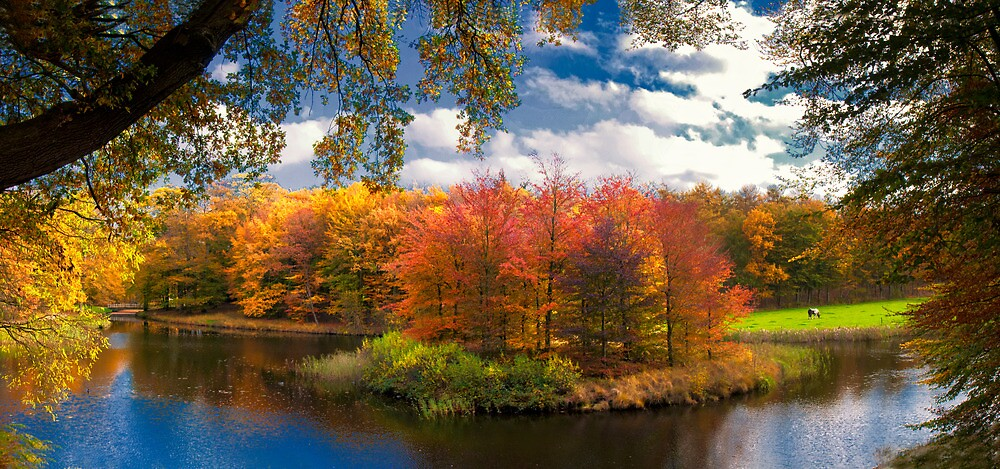 Autumn Colours by THHoang