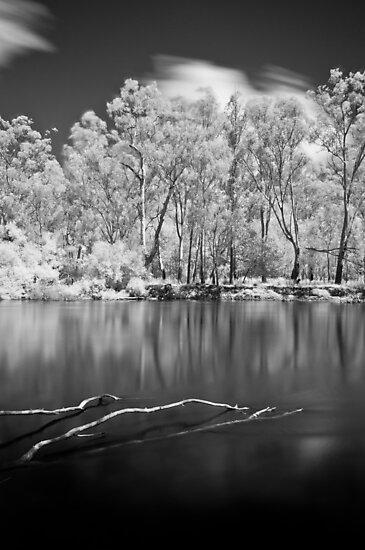Sticks in Water by John Violet