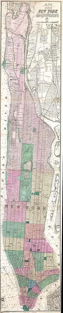 Vintage Map of New York City (1868) by BravuraMedia